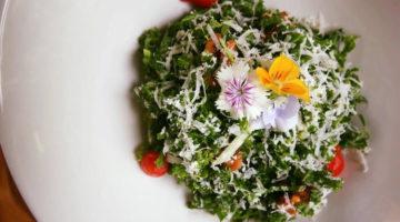 New Prix Fixe Lunch Menu @ Cocina Abierta